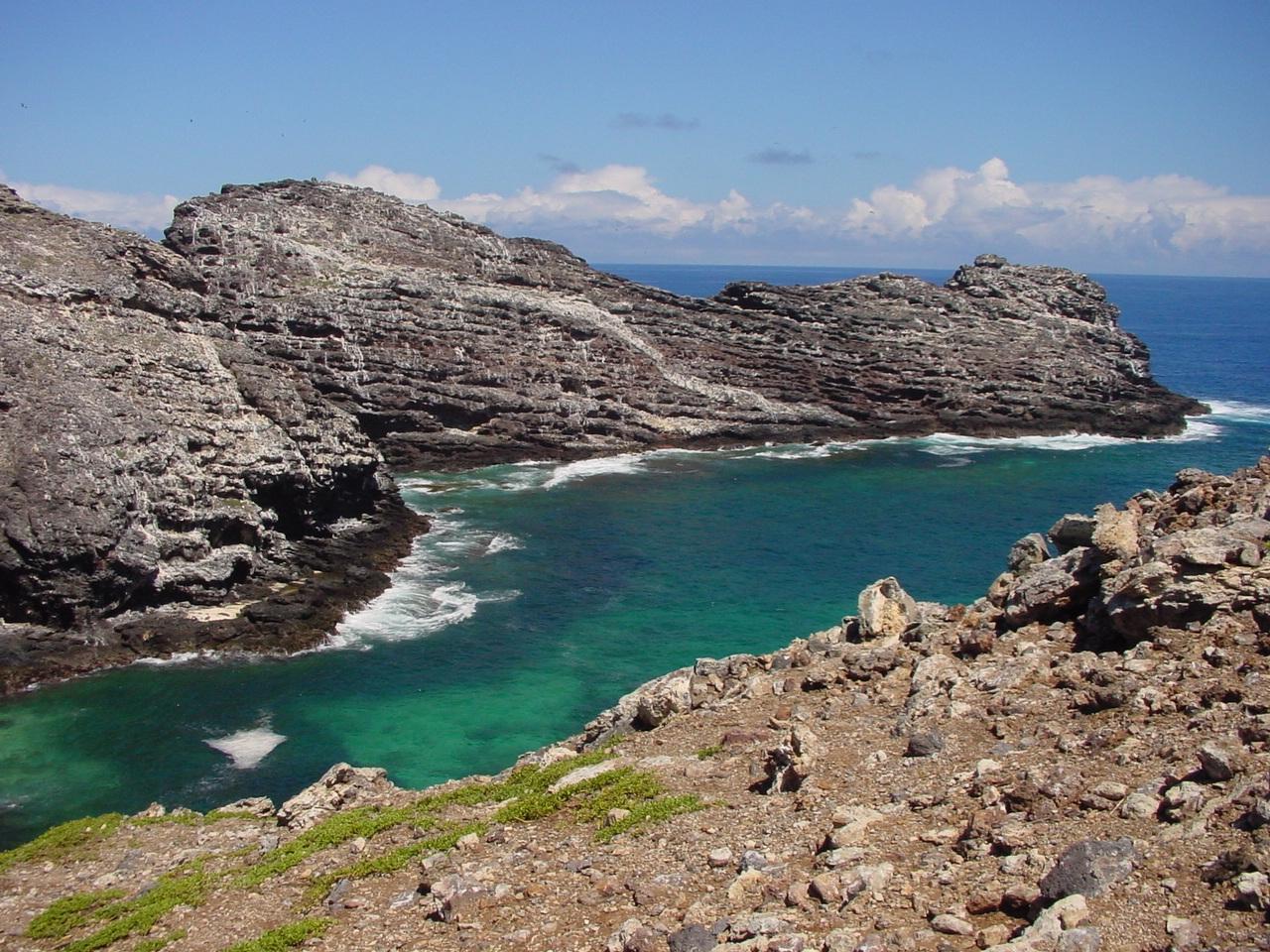 Ngs Project Nw Hawaiian Islands Necker Island